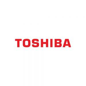Inks for Toshiba Tec Printheads